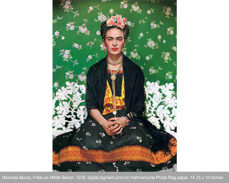 frida on white bench