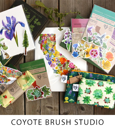 14 Coyote Brush Studio